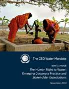 ceo_water_mandate_human_right_to_water_cover