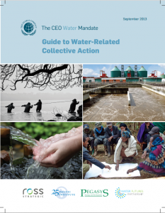 guide-to-collective-action-2013-cover
