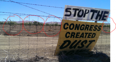 These signs are common along Highway 5 in California's Central Valley, especially where junior water-rights holders have land that won't get water during droughts. Ironically, this one is placed right in front of a newly planted almond orchard.