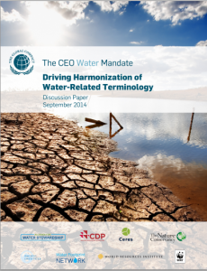ceowater-mandate-terminology-cover
