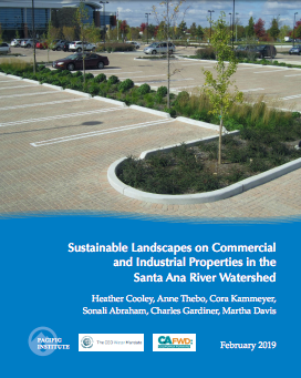 Sustainable Landscapes on Commercial and Industrial