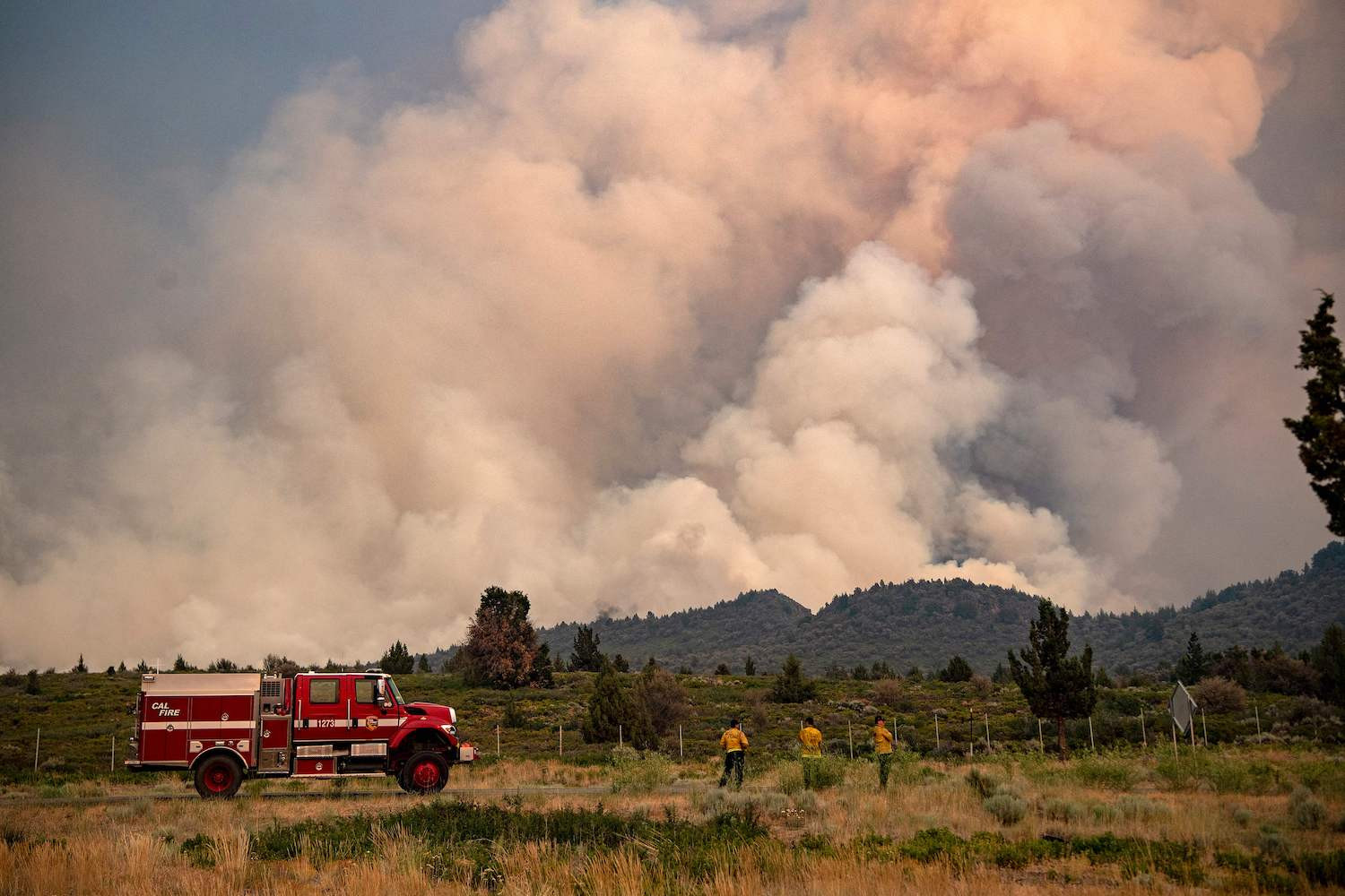 Firefighters monitoring the scene of a wildfire in Weed, California.