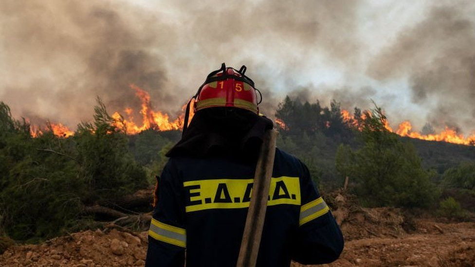 Back of a firefighters standing in front of wildfires with a hose over his shoulder